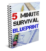 5-minute-survival-blueprint-cover
